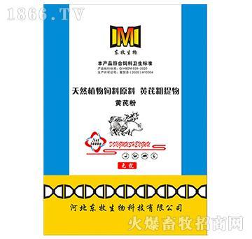 黄芪粉-提高畜禽对细菌和病毒感染的抵抗力
