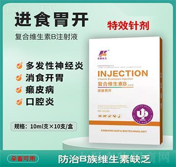 进食胃开-复合维生素B注射液