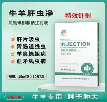牛羊肝虫净-氯氰碘柳胺钠注射液