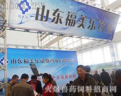福美乐动物药业在2013山东畜牧会上尽显实力