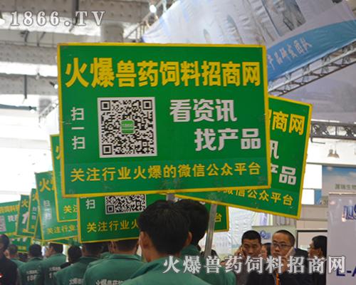 2016济南畜牧会,1866.TV再创辉煌,势不可挡!