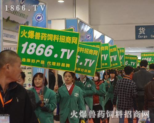 2016山东畜牧会,1866.TV努力拼搏,奋力向前!