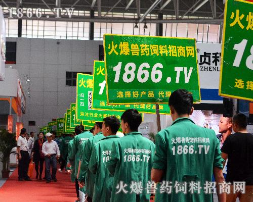 2017全国畜博会,1866.TV青春飞扬,再创佳绩!