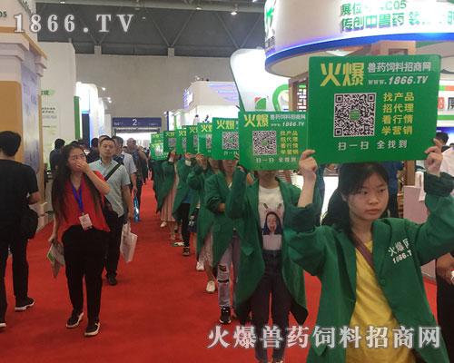 激情飞扬,火爆兽药饲料网风靡2018畜博会!