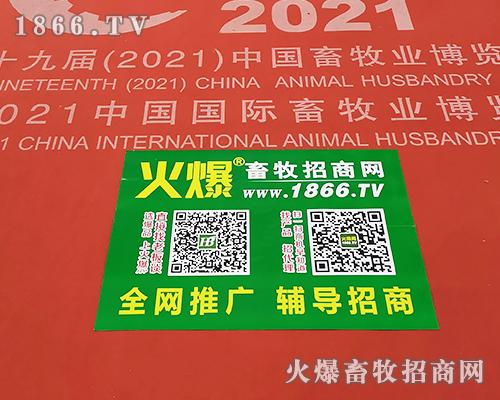 火爆袋,免费送!地贴图,惹人眼!2021全国畜牧会,火爆畜牧网铺天盖地做宣传!