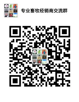 掌青青青免费视频在线青青草导航 握市场动态